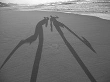 vai pela sombra